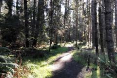 Activities - hike