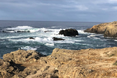 Gallery - ocean view