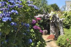 Guest Room - side garden