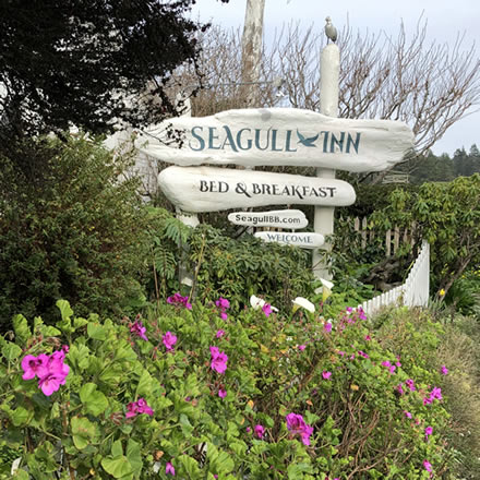 seagull inn sign with flowers and fence