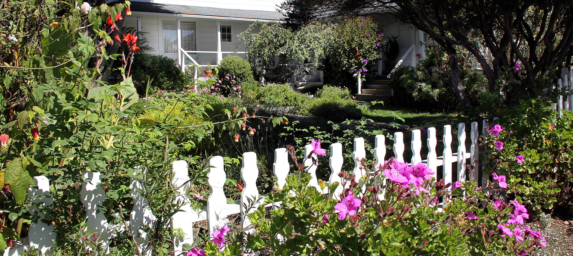 seagull inn gardens with picket fence